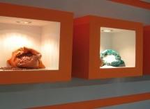 نمایشگاه مواد غذایی